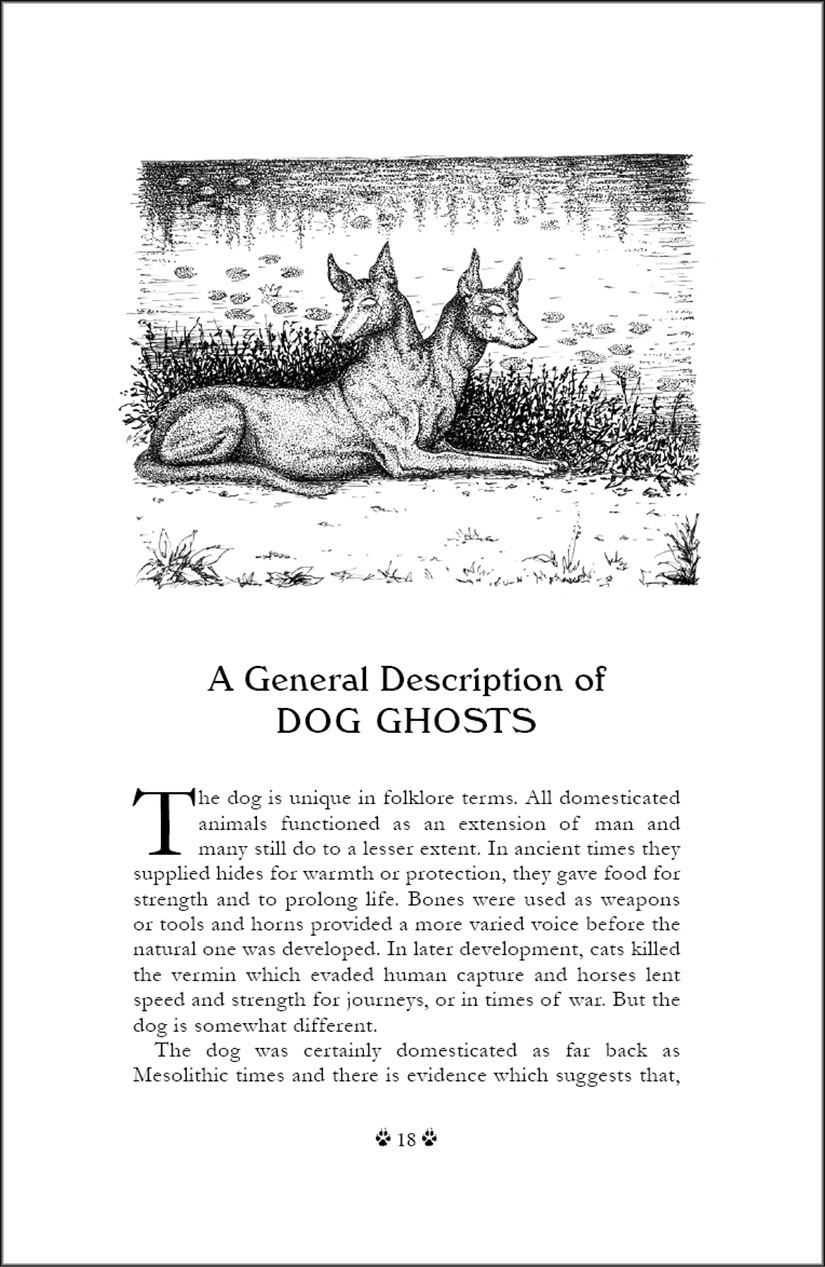 Black Dog Folklore by Mark Norman - page sample