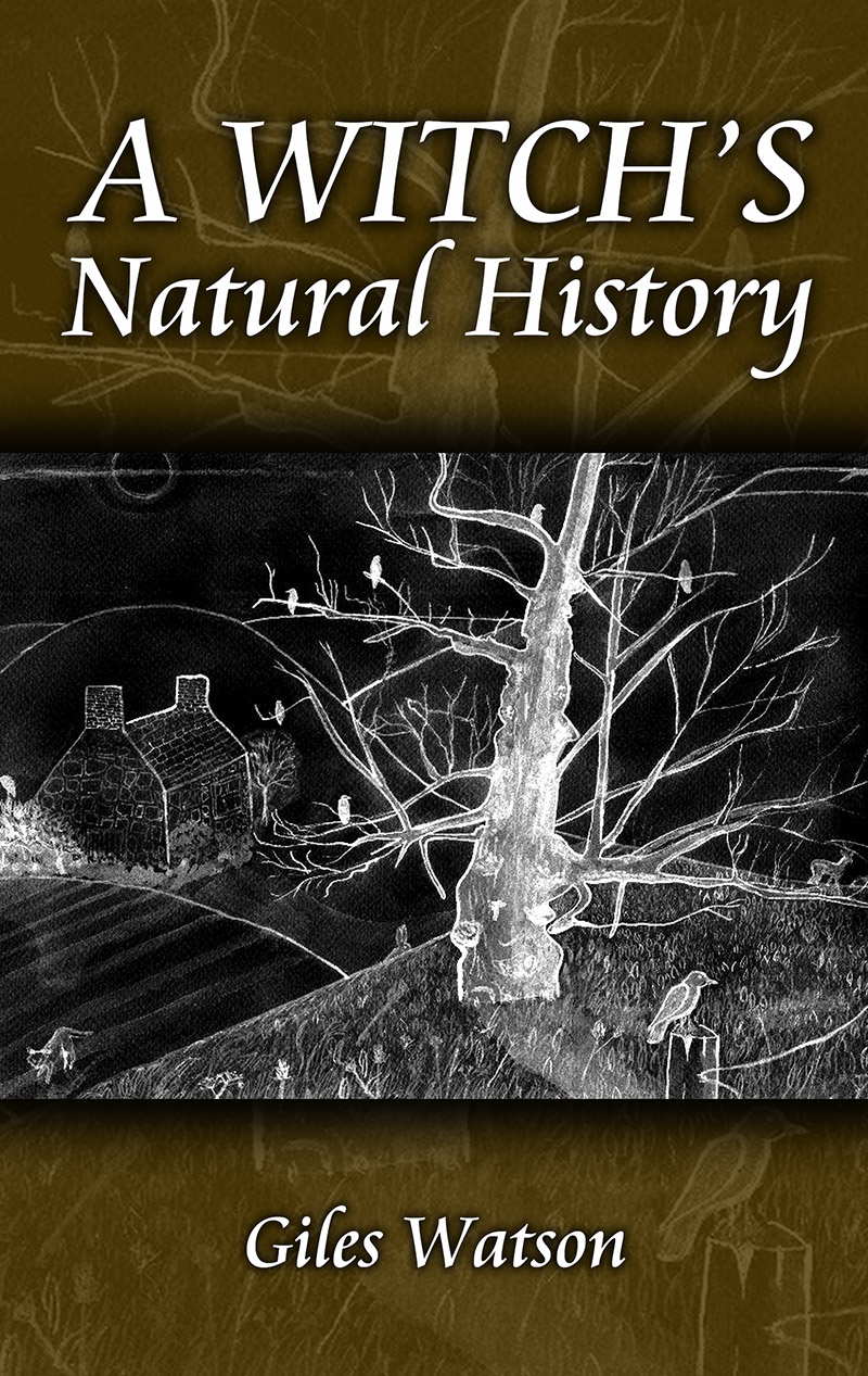 A Witches Natural History by Giles Watson - Paperback cover